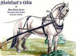 Skolvfast's Odin by lantairvlea