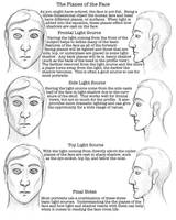 Facial Proportions Worksheet 3 by lantairvlea