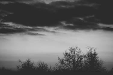 Dark Mist by x-DarkStar