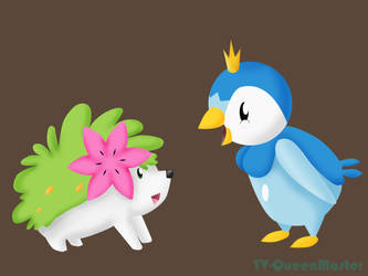 Piplup adventure by TV-QueenMaster