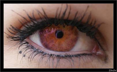 The eye by Elliot-Pan