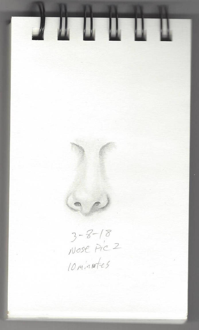 Sketch Nose Pic 2 by pwreed