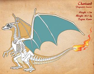 Charizard Skeleton v3 by Chibi-Pika
