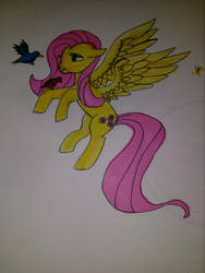 Fluttershy by doctorwhooves107