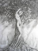 Dryad 1 by amyashbaugh