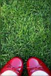 +red love II+ by ScHmOlLi