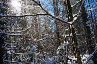 Snowfall by Hrimgrimnir