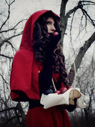 Little Red Riding Hood 2 by 23619
