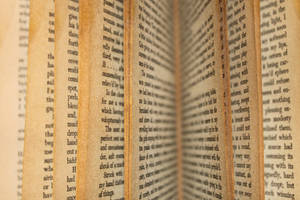 Open Book by melemel