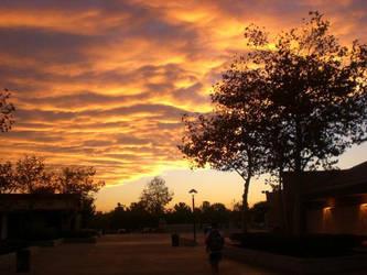 Breezy Sunset by BeckySteele
