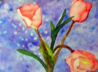 Tulips by BeckySteele