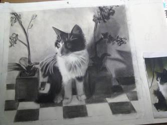 my cat by BeckySteele