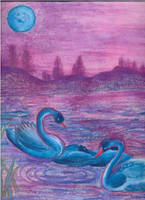 Blue Swans by mayomi