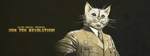 Major general whiskers facebook cover by finlande