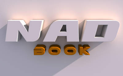NADBOOK GoldenHourStudio by NADBOOK23