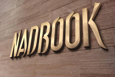 3D Wall Logo MockUp 2 by NADBOOK23