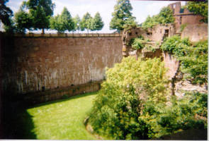 The Grounds, Heidelberg Castle by Abadoss