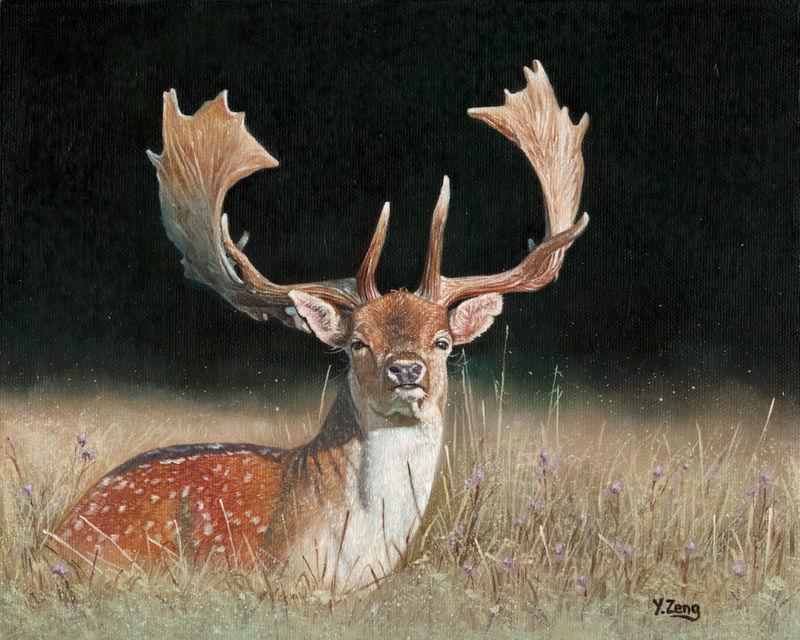Oil painting - Fallow deer dama dama by PeachtreeDandan