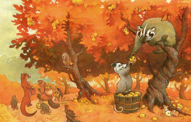The Harvest by Rowkey