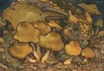Mushroom Dragon 1 by Rowkey
