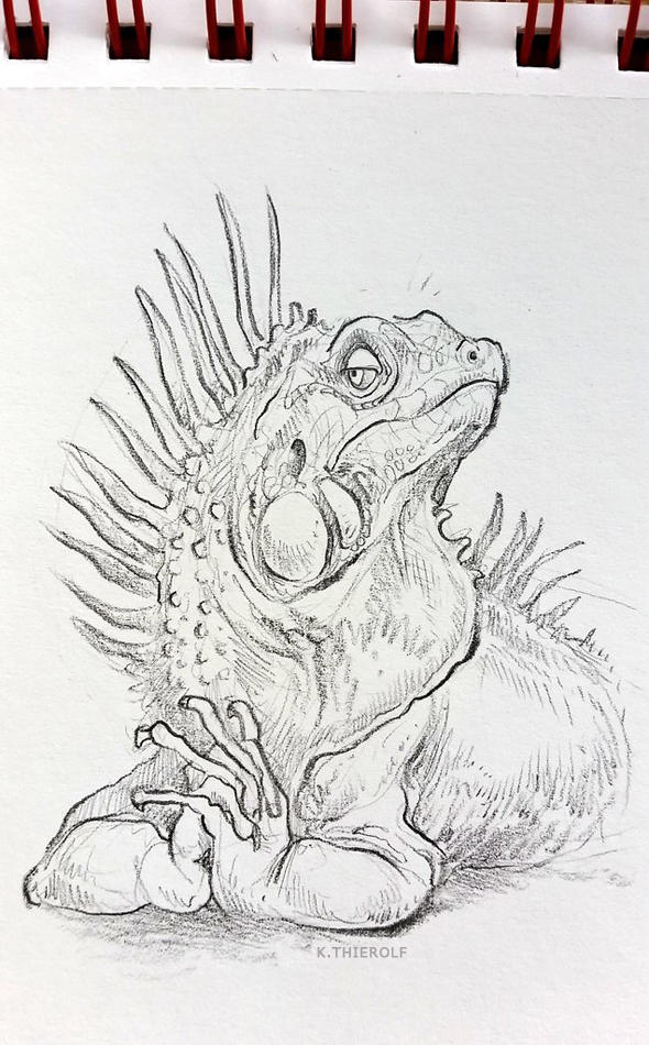 Sketchbook: Haughty Iguana by Rowkey