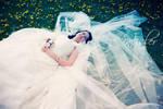 wedding 21 by incislerphotography