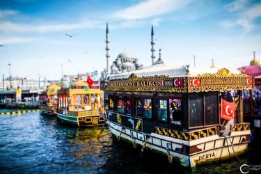Istanbul - Eminonu Fisilitilari by the-universal-mind