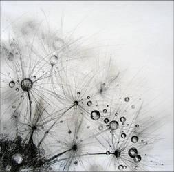 Dandelion by Vermiliona