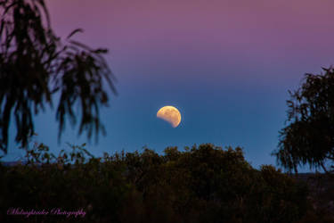 Eclipse by midnightrider79