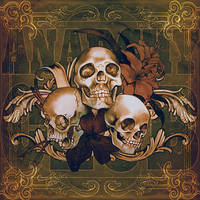 Skulls cover art by raqmo