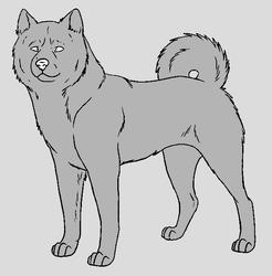 Dog Template - Shiba Inu by NaruFreak123-Bases
