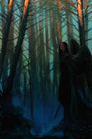 Hidden in the shadow by anndr