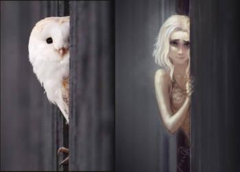 Owl by anndr
