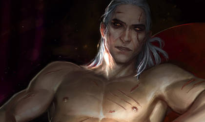 A little more about Geralt by anndr