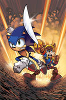 Sonic the Hedgehog 234 Cover by herms85