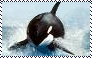 Orca Stamp by Raephen