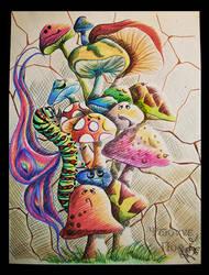 Magic Mushrooms by Petirrojoazul