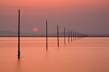 The Sunset Way by Waylandscape