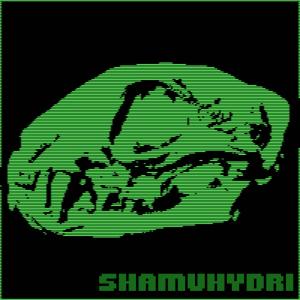 ShamuHydri's Profile Picture
