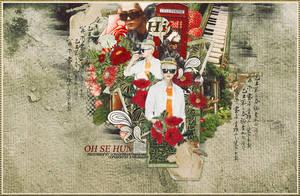 140412. OH SE HUN's DAY by LonaSNSD