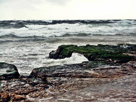 Into the Rocks by DyannaC