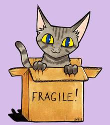 Box kitty by Loony-Madness