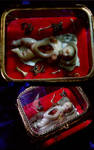 18th century infant Anatomie by Sleetwealth
