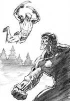 Hulk v Wolverine 03022012 by guinnessyde
