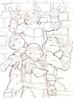 Teenage Mutant Ninja Turtles 2012 by guinnessyde