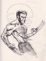 07262013 Wolverine by guinnessyde
