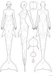 Mermaid anatomy by empyrean
