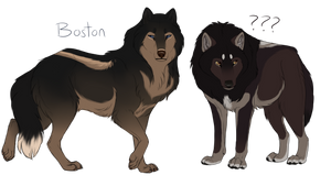 Boston and Songo by Wildfire-Tama