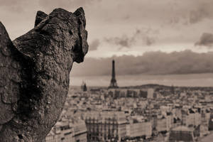 Paris 25 by danielcardoso