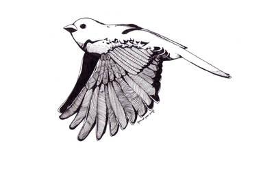 The Little Sparrow by jayblue9